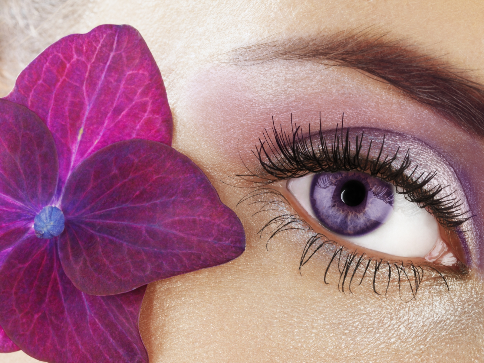 Lash Brow Tinting Course West Midlands Nail Beauty Academy